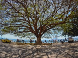 Budget travel and photography in East Timor